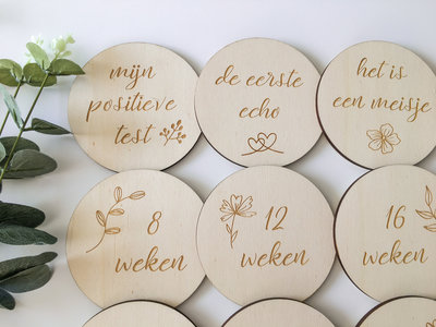Mijlpaalkaarten zwangerschap Nederlands